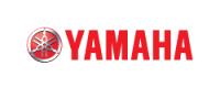 Shallow-Minded-Fishing-Charters-Yamaha