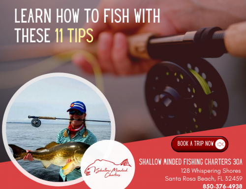 Learn How To Fish With These 11 Tips